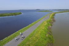 Three bicyclist riding through Balckwater National Wildlife Refuge