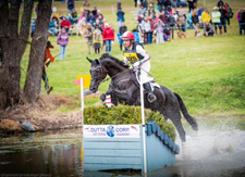 Horse jumping over a jump at an event