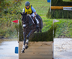 Horse jumping in a Steeplechase race