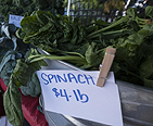 Picture of spinach for sale at a farmers market.
