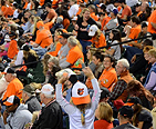 Picture of Orioles fans in the stands watching the game