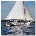 Skipjack sailing