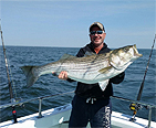 Man holding a stripped bass he caught on a boat.