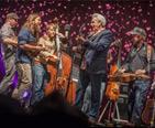 DelFest concert. Image provided by Brad Kuntz