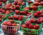 baskets of strawberries