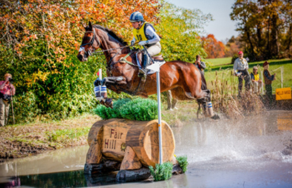 Horse and rider jumping an obstacle in the water