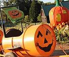 Fall kids pumpkin ride