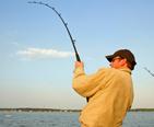 Fisherman reeling in a catch.