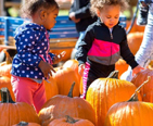Two little girls picking out pumpkins