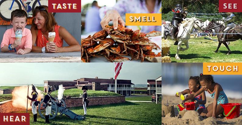 Consumer Newsletter Header Image