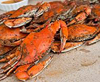 Steamed Crabs for eating.